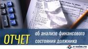 Отчет о анализе финансового состояния должника